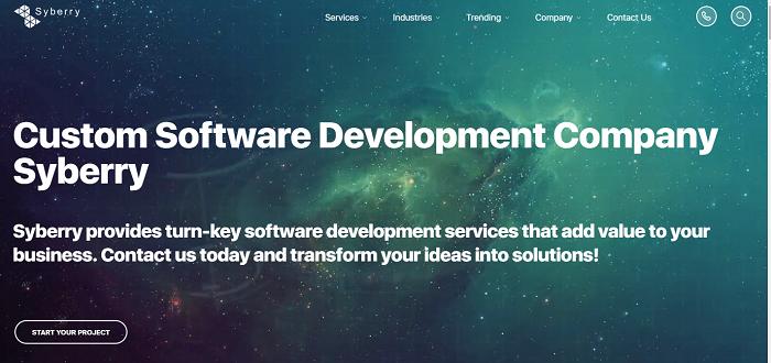 Syberry- software-development-Toporgs