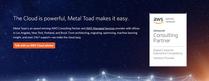 AWS Metal Toad-Toporgs